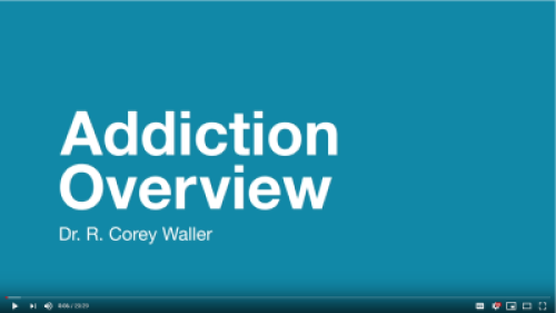 Screenshot of Dr. Waller's Addition Overview Youtube video